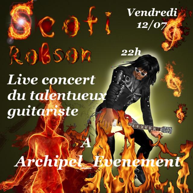 Affiche concert Scofi